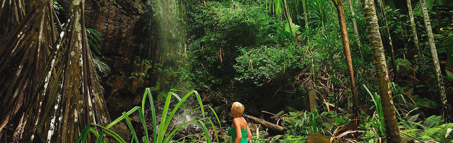 Vallee-de-Mai Wasserfall Seychellen