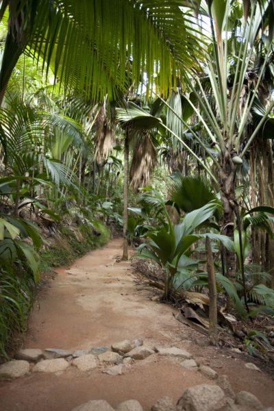 Reisebericht - Seychellen 1