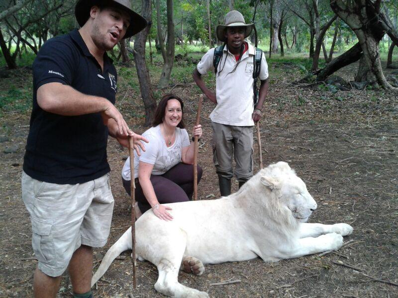 Patricia Dehm-Schimpfermann streichelt einen Weißen Löwen im Casela Park, Mauritius