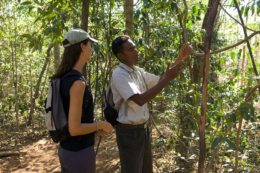 Eine ganz besondere Reise nach Anjajavy, Madagaskar 5