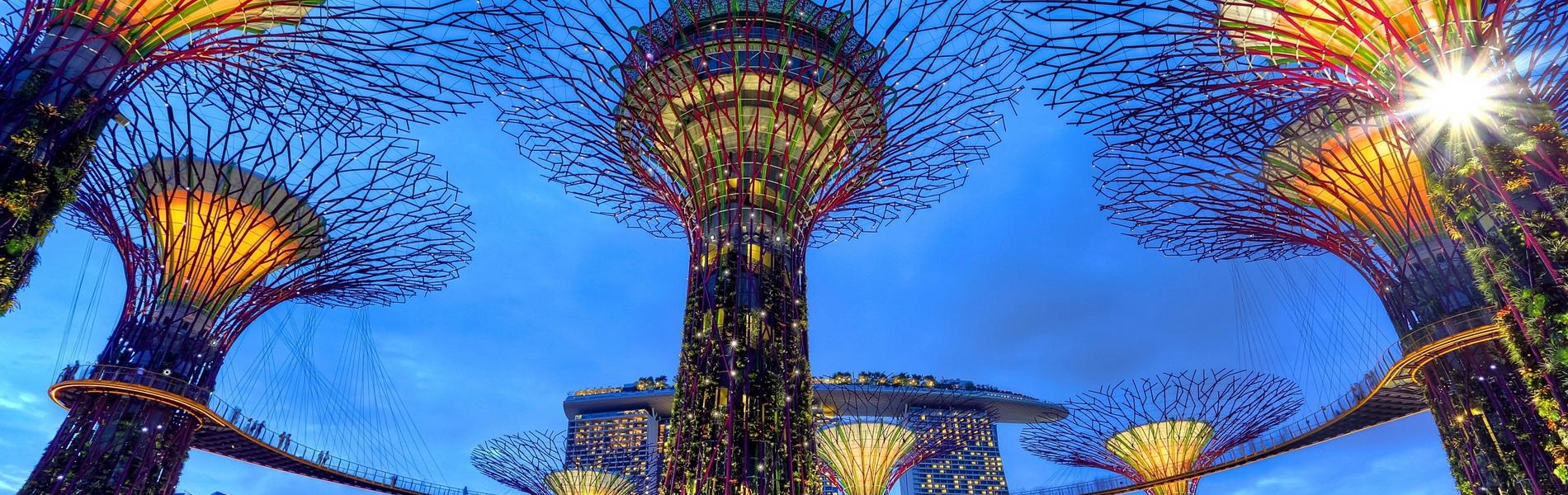 Supertrees und Marina Bay Sands, Singapur, Photo by Duy Nguyen on Unsplash