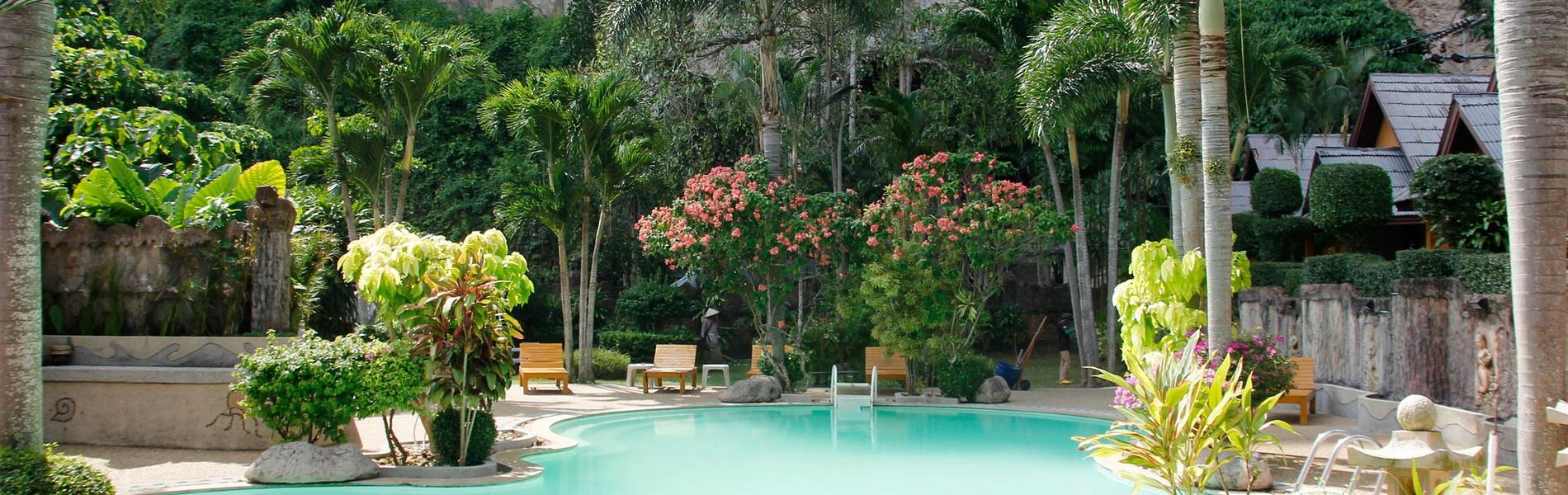 Pool und Dschungel, CC0 Creative Commons