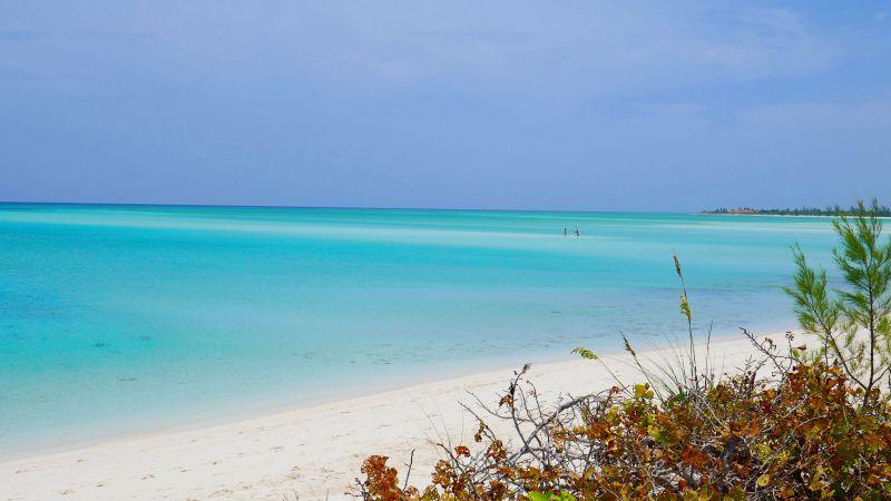 COMO Parrot Cay Strand am Meer