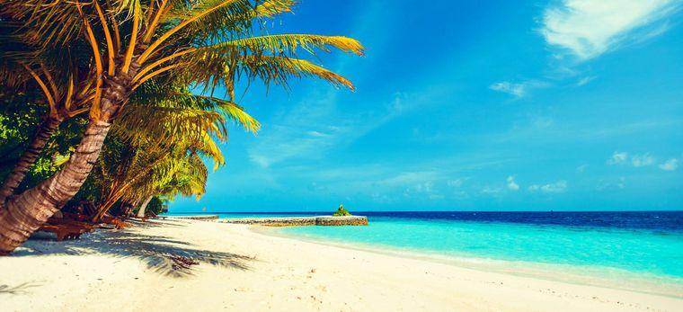 Ein Malediven-Strand zwischen türkisem Meer und Palmen. In der Ferne ein paar Wasservillen.