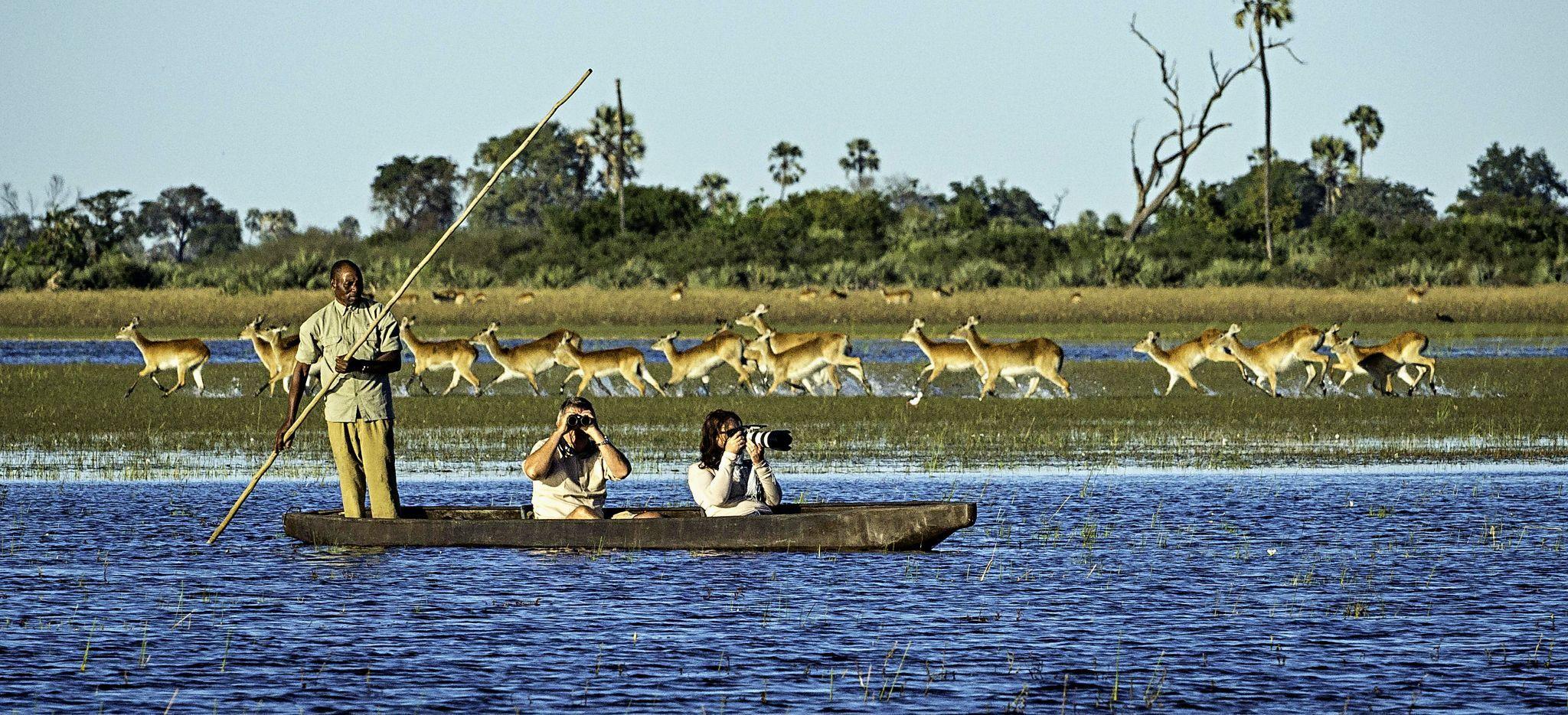Fotosafari mit einem Kanu im Okavango Delta, Botsuana
