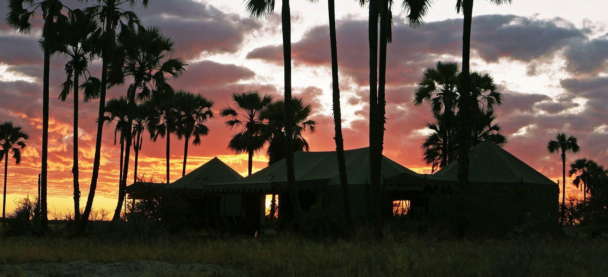 """Sonnenuntergang hinter Palmen und Gebäuden des """"Jack's Camp"""" in Botswana"""