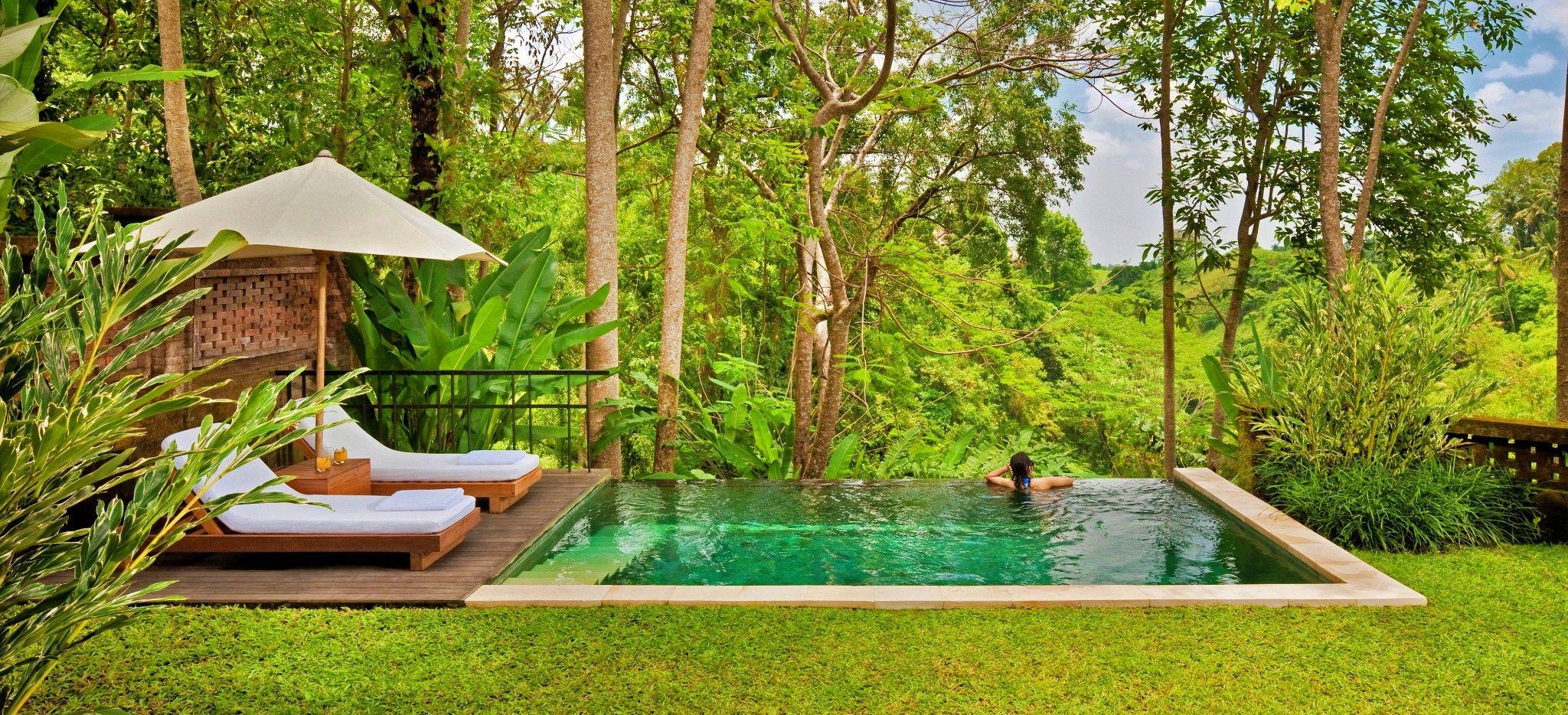Ein Pool zwischen einem englischen Rasen und dem balinesischen Dschungel