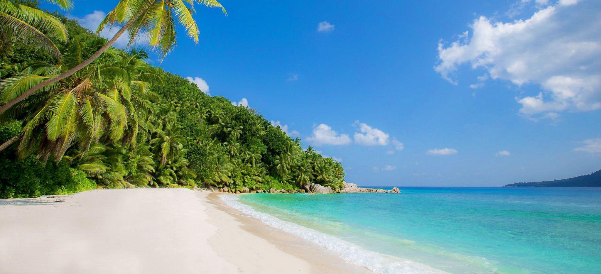 Grand Anse - Silhouette