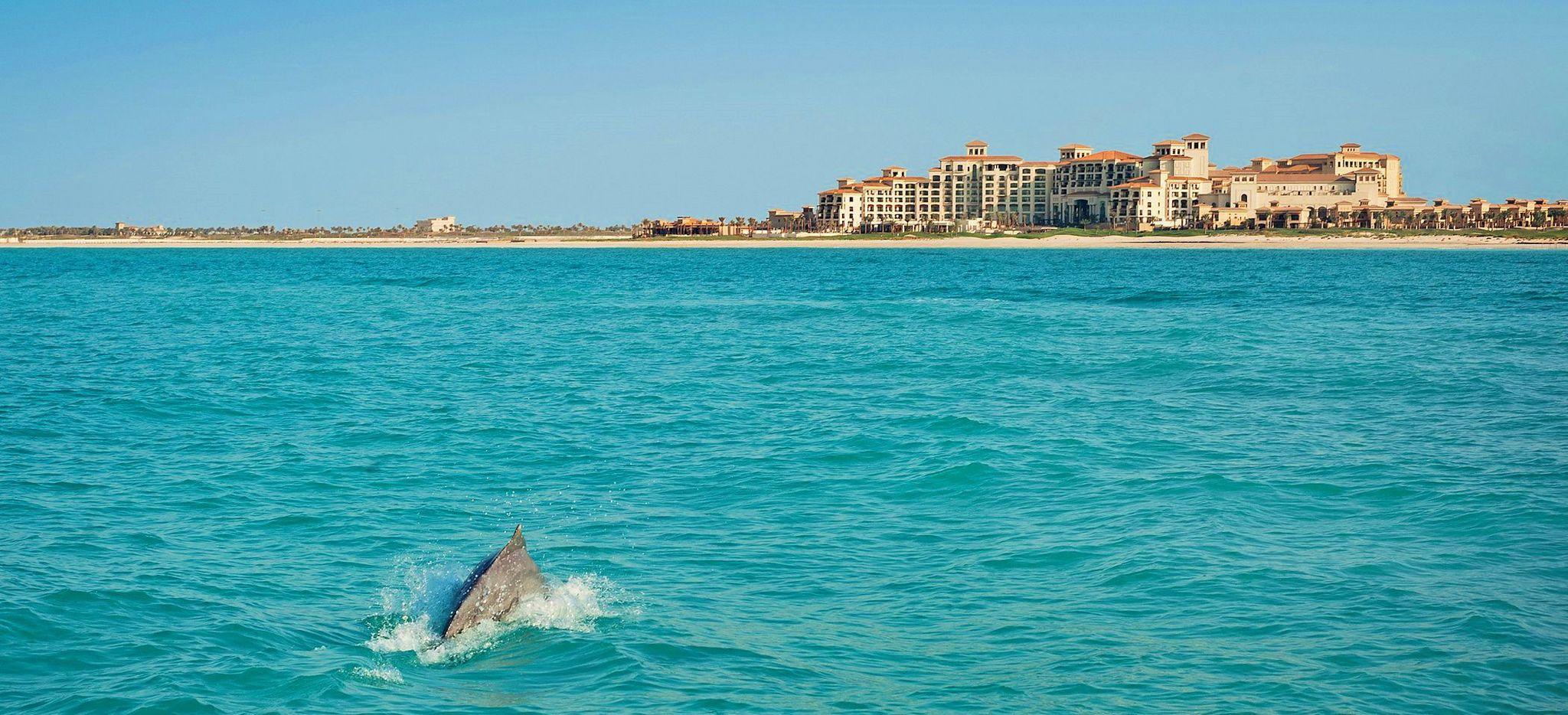 Walflosse im Meer vor der Skyline von Abu Dhabi
