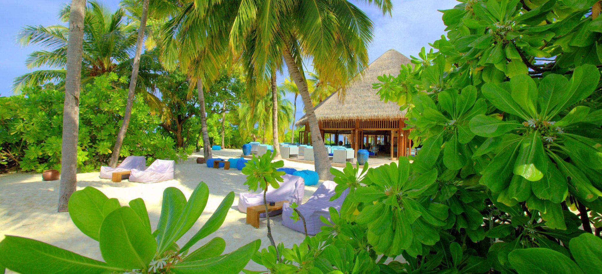 Eine Hütte im Dschungel der Malediveninsel Mirihi, darin eine Bar