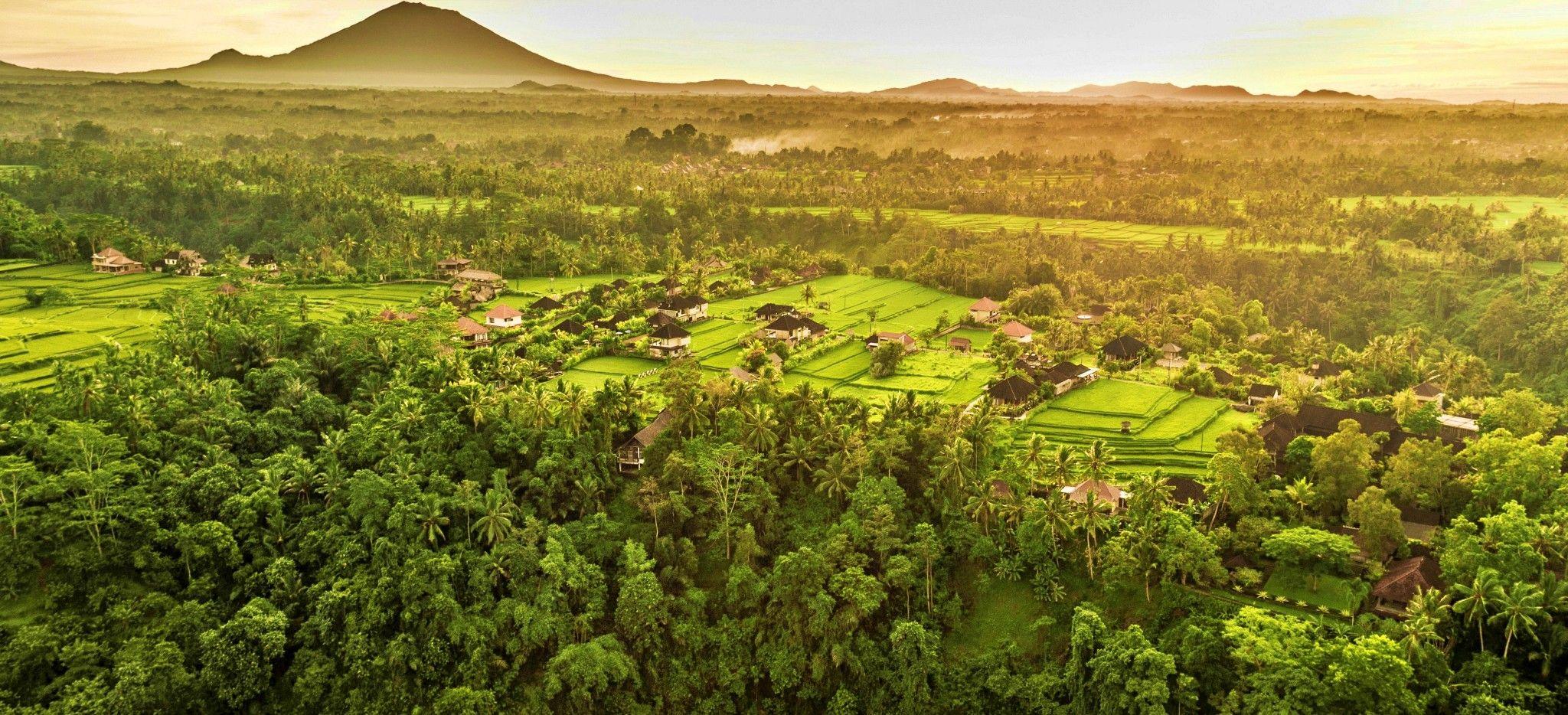 """Reisfelder, Dschungel und ein Berg in der ferne, Luftaufnahme der Insel Bali über dem Hotel """"COMO Uma Ubud"""""""