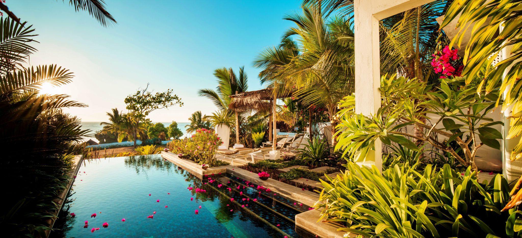 Ein Pool, umrahmt von Bougainvillea