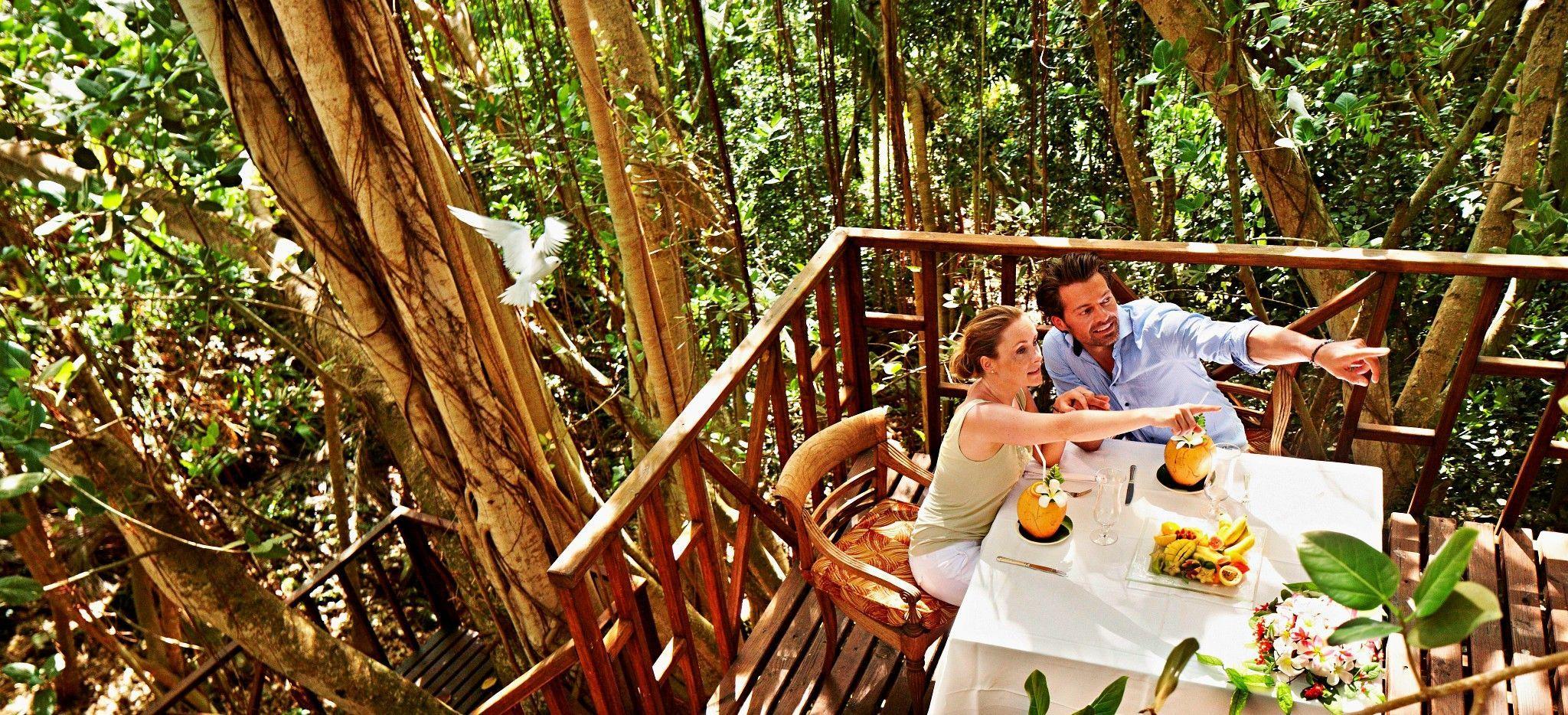 Ein Paar diniert in einem Banyan-Baum auf Frégate Island, Seychellen