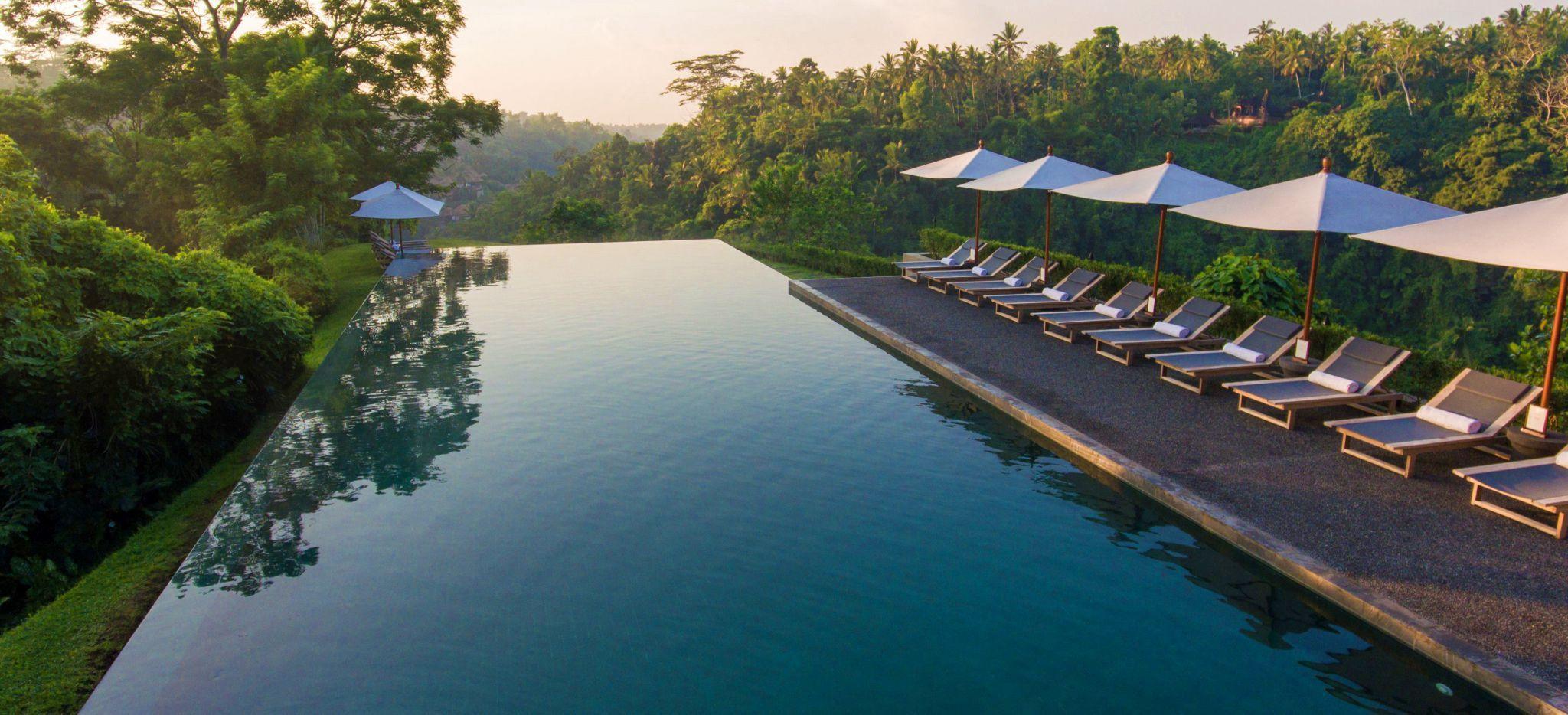Infinity Pool des Alila Ubud, mit Strandliegen und umgebendem grün