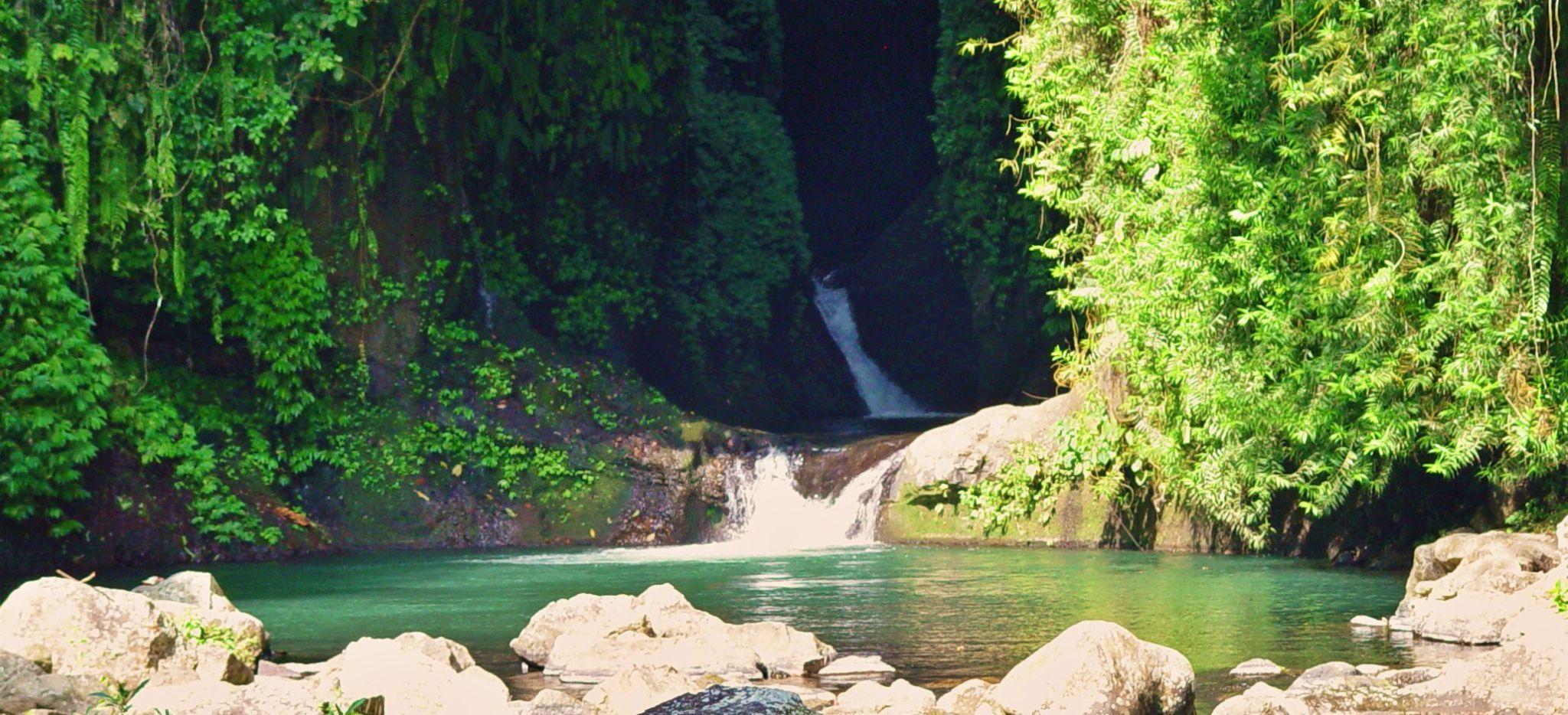 Wasserfall Becken in der Natur Balis, umringt von Dschungel