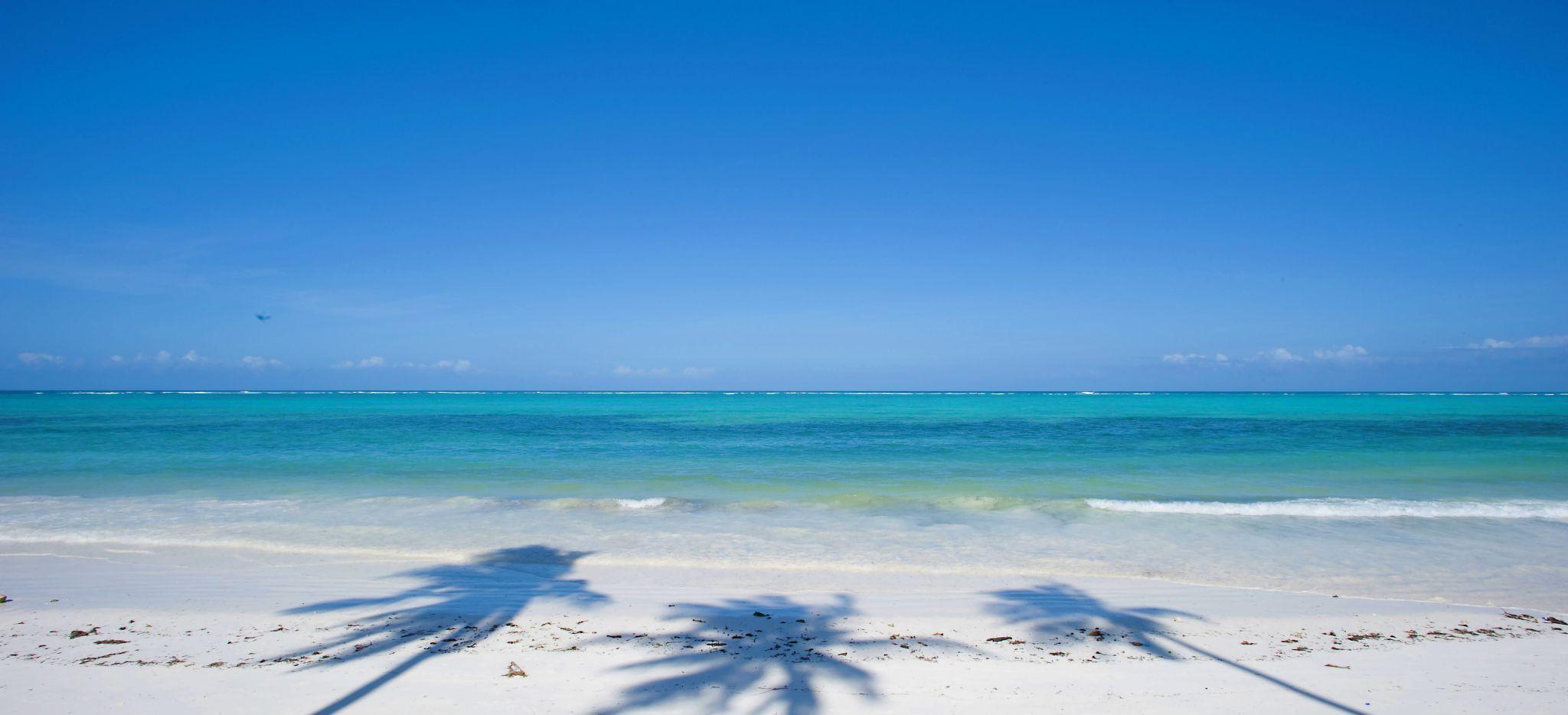 Ein Blick auf das Meer, im Sand die Schatten von Palmen
