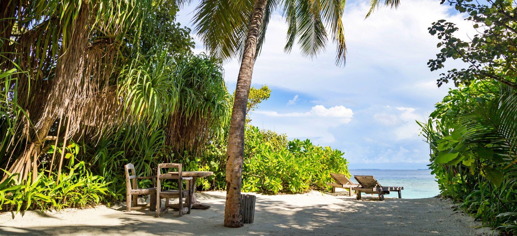 Ein naturbelassener Strandzugang durch Gebüsch und Palmen, mit einer Strandliege