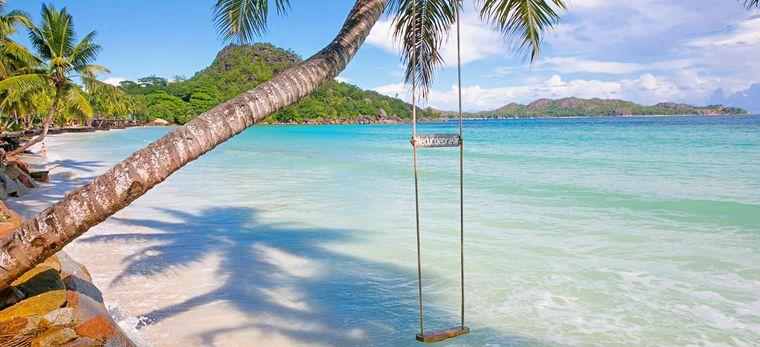 Strand mit Schaukel an Palme