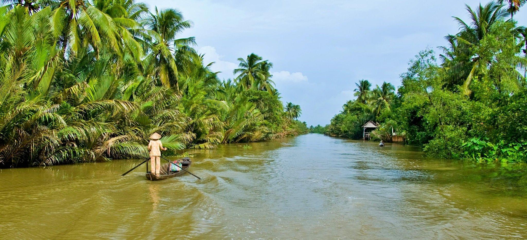 Ein boot fährt auf einem Fluß umringt von Palmen in Vietnam
