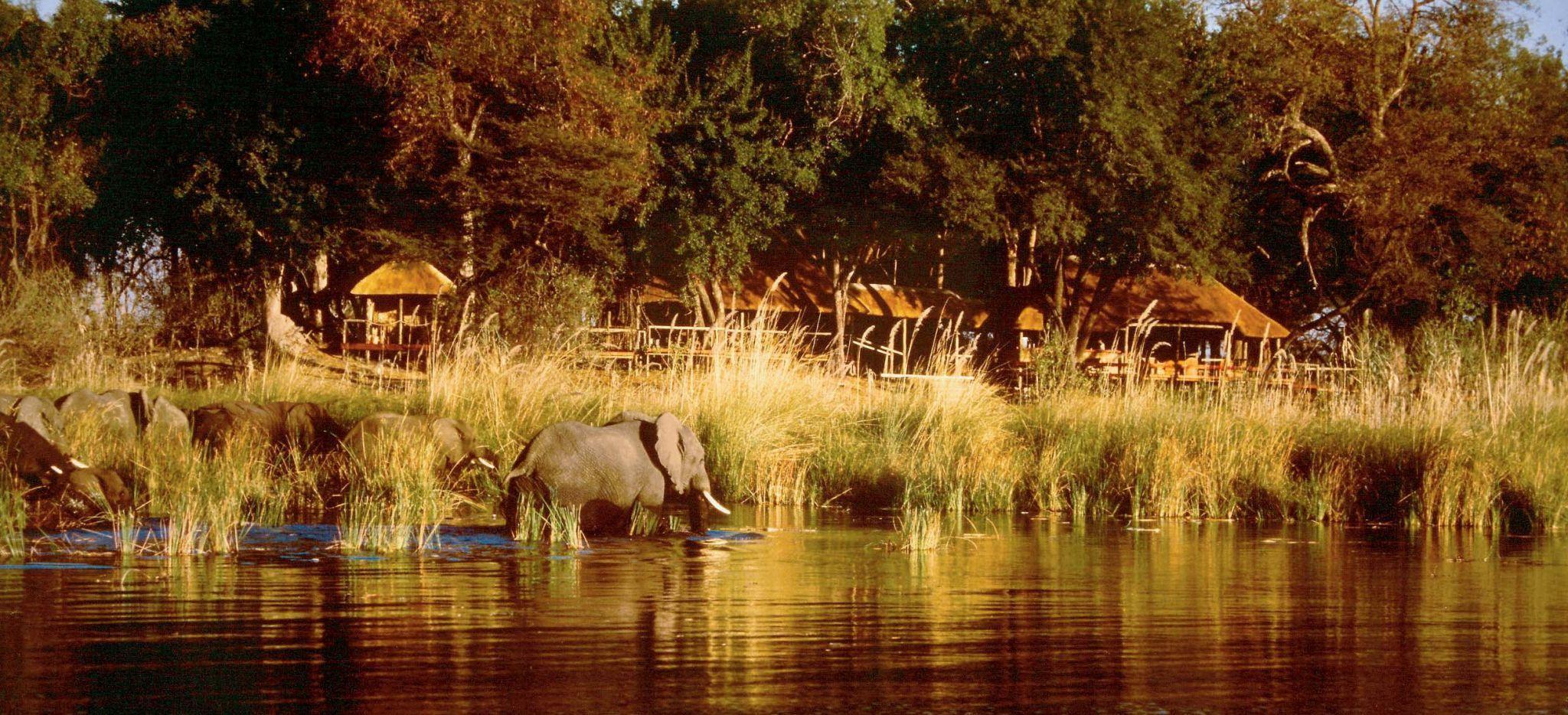 "Das Camp ""Duma Tau"" vom Fluss aus fotografiert"
