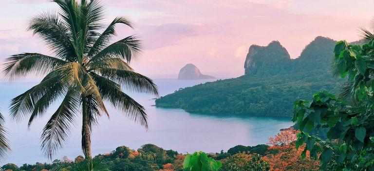 Palmen und Hügel an der Küste von Príncipe