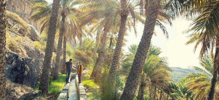 Ein Paar steht an einem Wadi, den Omanischen Aquädukten, inmitten von Dattelpalme, Oman