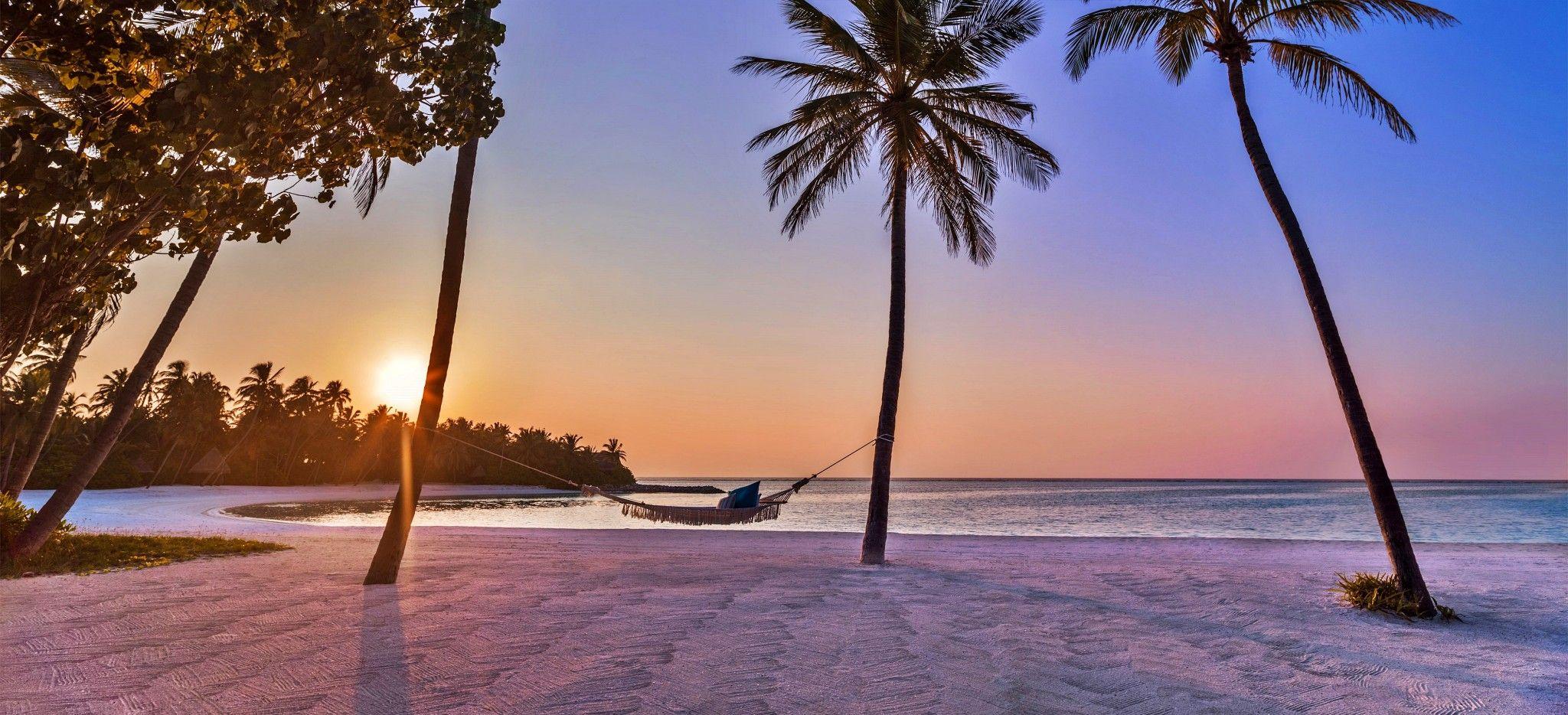 Eine Hängematte zwischen zwei Palmen an einem Strand im Abendlicht