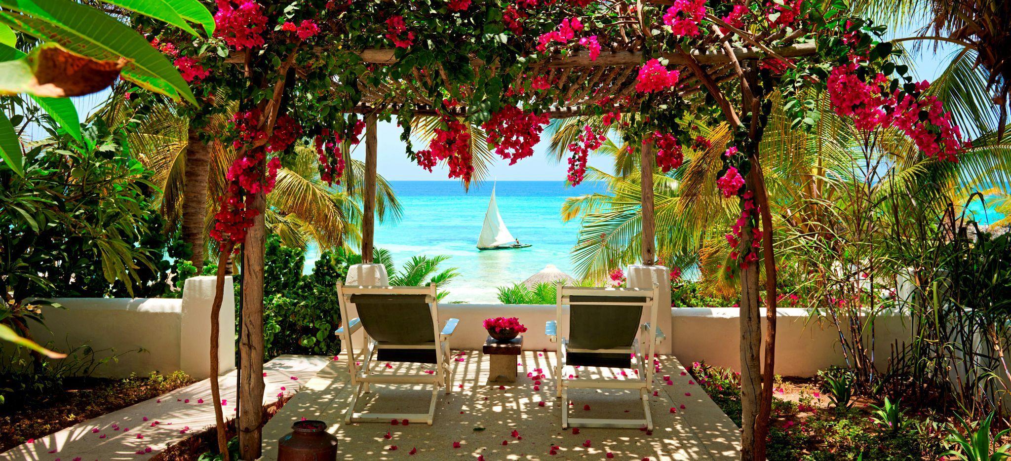 Zwei Stühle mit Blick auf das Meer, mit einem Baldachin aus Bougainvillea