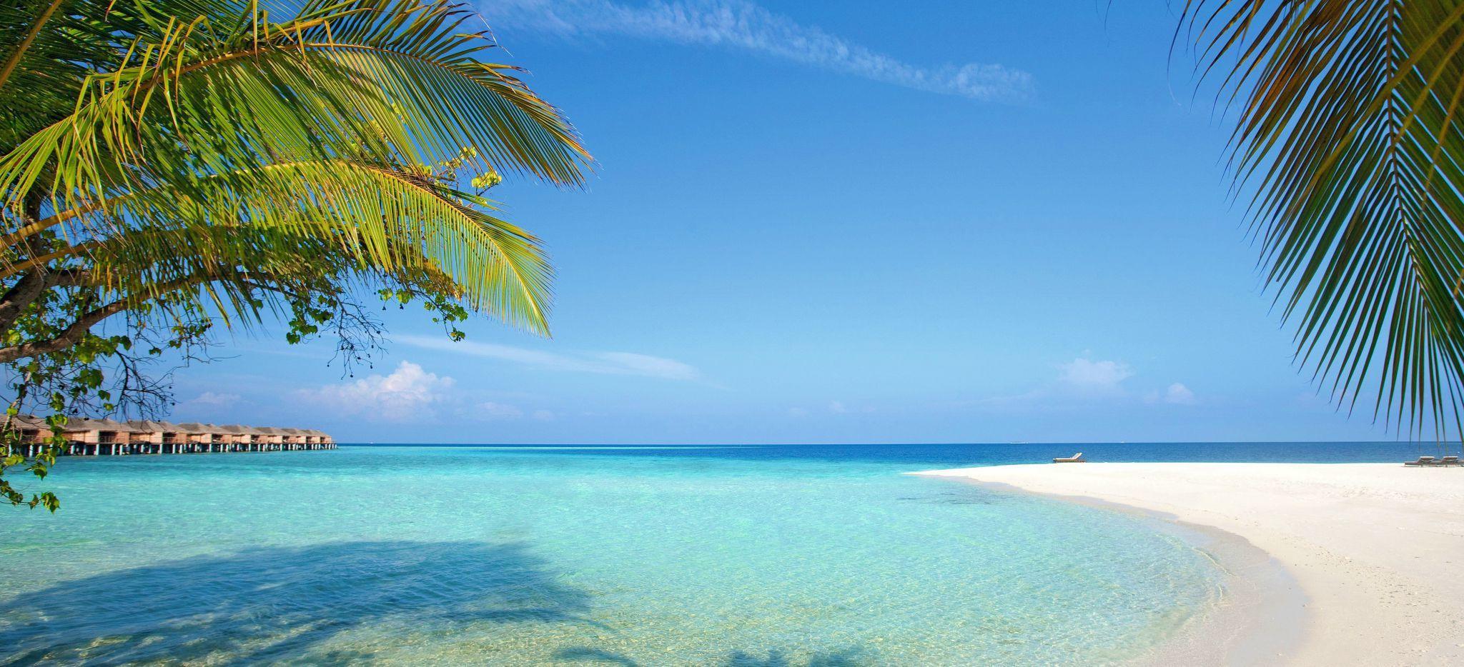 Ein Strand unter Palmen und Laubbäumen, im Hintergrund die Wasservillen des Hotels Constance Moofushi auf den Malediven