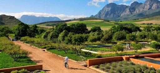 Tourist auf Fahrrad radelt durch eine typische Farm in Südafrika