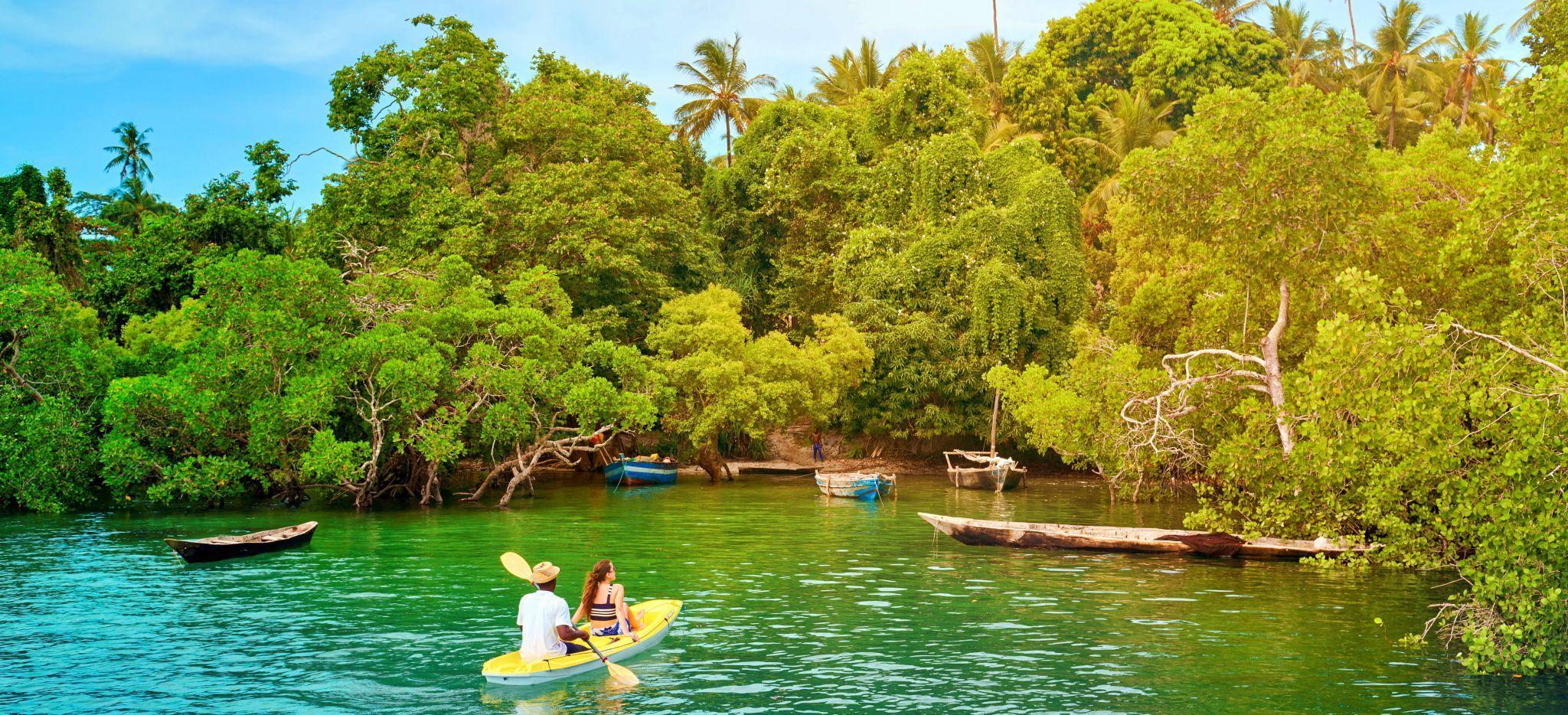 Paar in einem Kayak betrachtet einen wilden Mangrovenwald