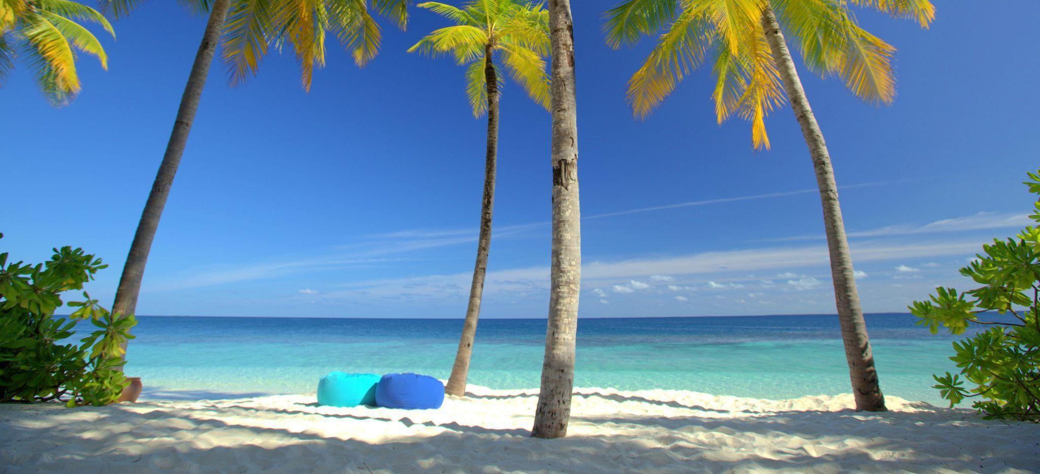 Ein Strand und das Meer durch Palmen hindurch gesehen. Zwischen den Palmen liegen zwei Sitzsäcke