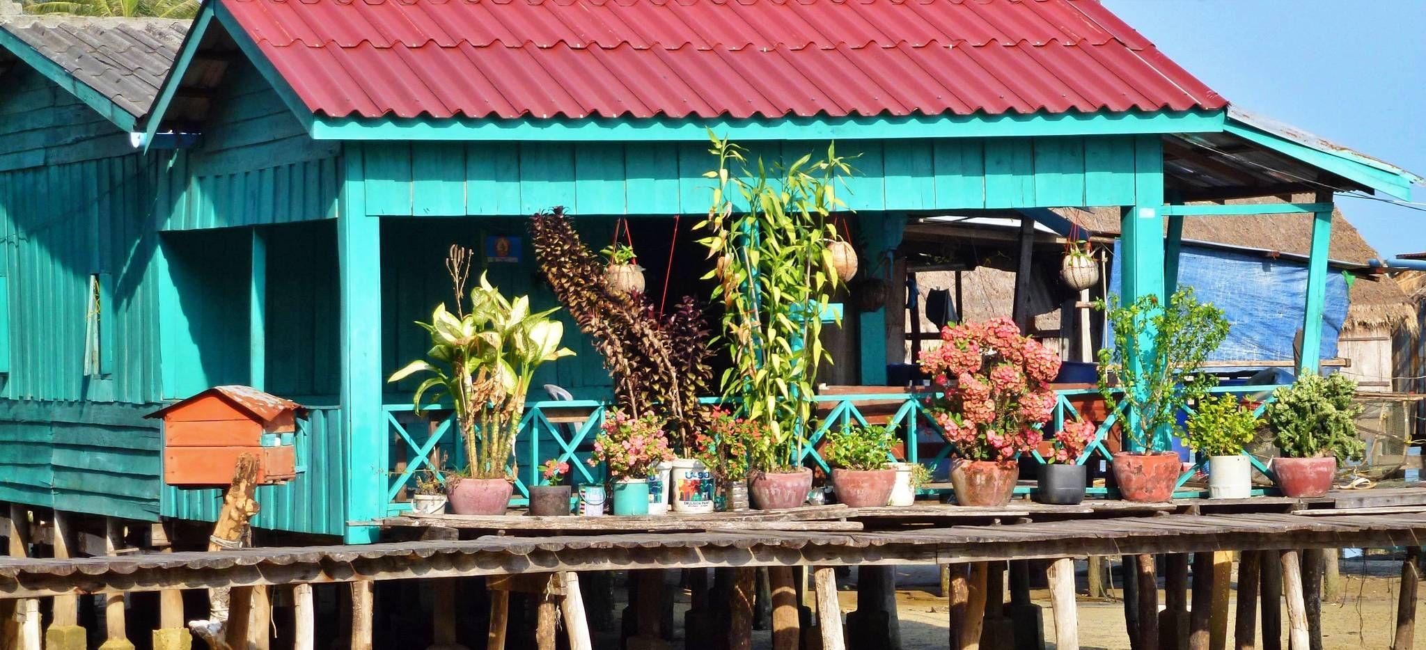 Kräuter aufgestellet auf der Terrasse eines Kambodschanischen Hauses auf Stelzen auf einem Fluss