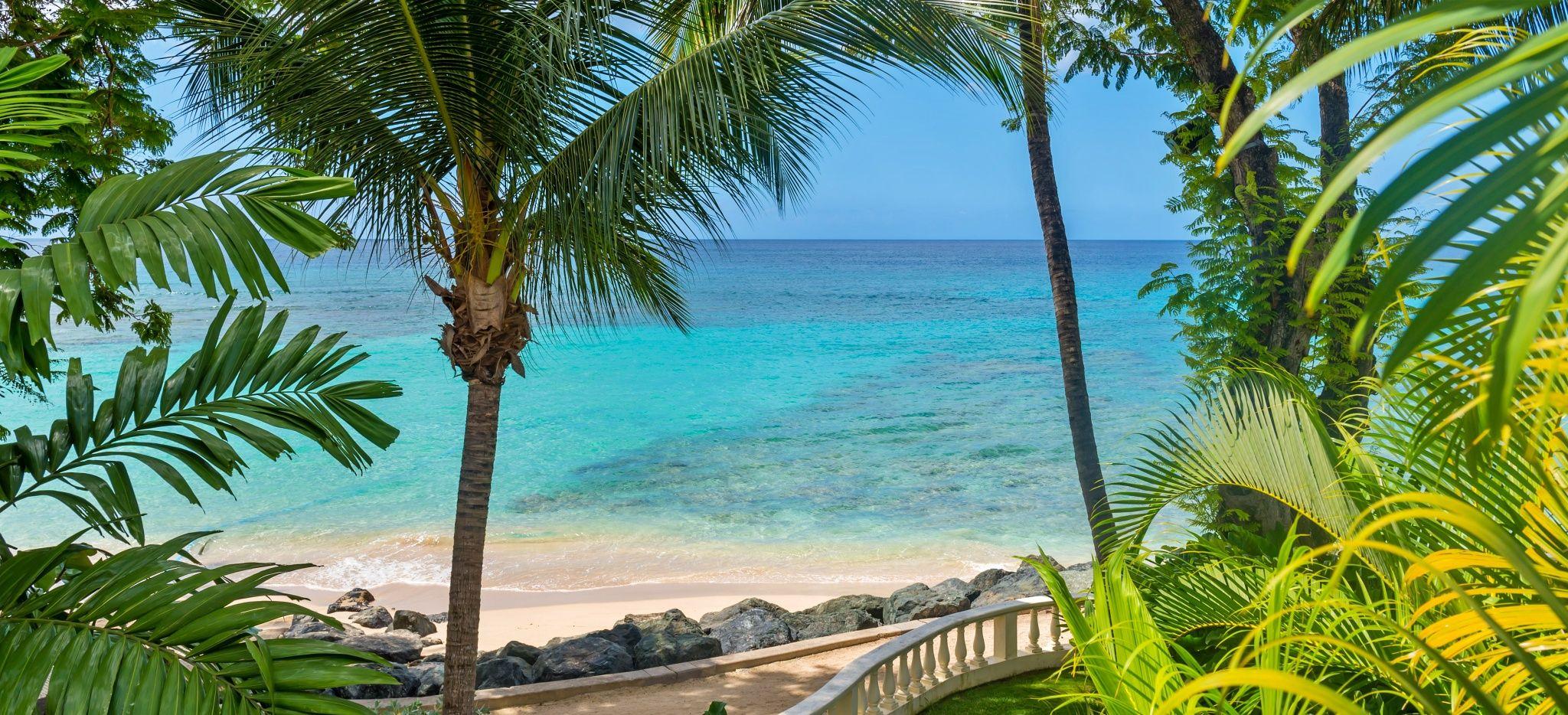 """Der Strand des """"Coral Reef Club Barbados"""" durch das Gebüsch gesehen"""